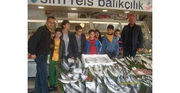 Sosyal Sorumluluk Projesi İsmail Murat Balta'dan…