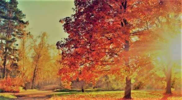 Sonbahar Ekinoksu Yarın Başlıyor…