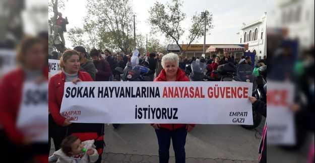 Silivrili Hayvan Sevenler Kadıköy'de Buluştu…