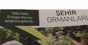 FLAŞ HABER… Yıldız Parkı, Emirgan Korusu Silivri'ye Geldi!