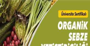 Organik Sebze Yetiştirmek İsteyenler İçin Kurs Açılıyor...